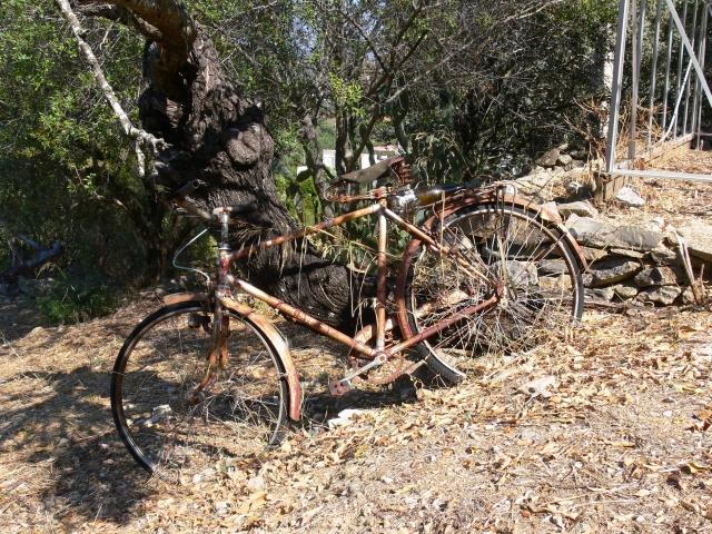 fiets